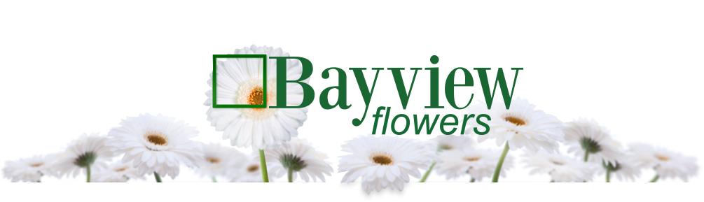 Bayview Flowers