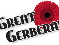 Great Gerbera