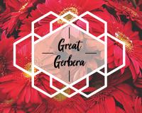 great-gerbera-2018.png